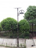 成都市温江区春林村委会太阳能亚博体育app官方下载苹果版工程